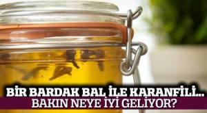 dis_Agrisi_karanfil_bal