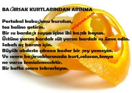 portakal-kabugu