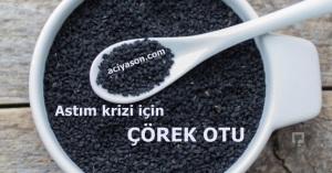 corek-otu-cayi-nasil-yapilir_646x340